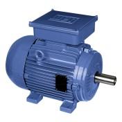 IP55 – Cast Iron Frame – Single-Phase Motors   WEG