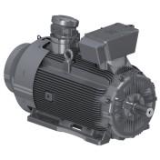W22XC Series – Ex d(e) IIC T4 Gb (Ex tb IIIC T125ºC Db IP6X)