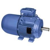 Brake Motor – Cast Iron Frame – Standard Efficiency – IE1 | WEG