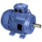 W21 – Cast Iron Frame – Standard Efficiency – IE1 – 50°C | WEG