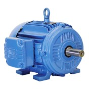 TEFC – NEMA Premium Efficiency Motors